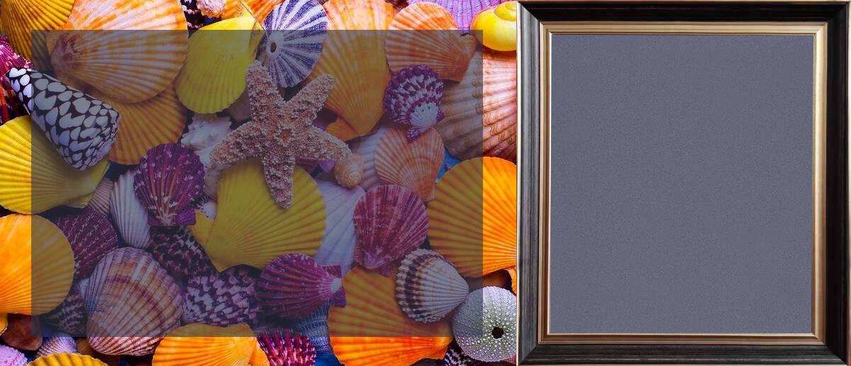 卡百利藝術涂料天然貝殼片